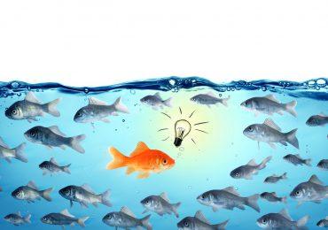 Blended Learning Angebot: Konsequent führen – Ziele leichter erreichen