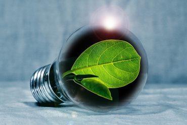 Mehr Energie und Tatkraft im Führungsalltag